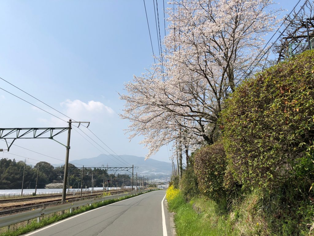 On the road from Ueki Station