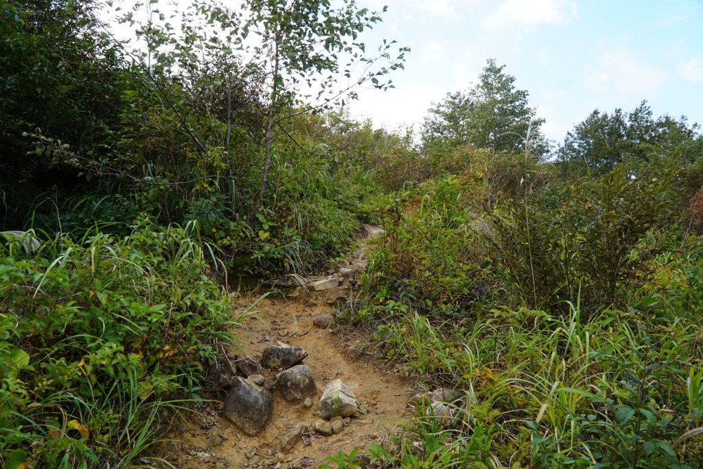 Mt Arashima Hiking Path