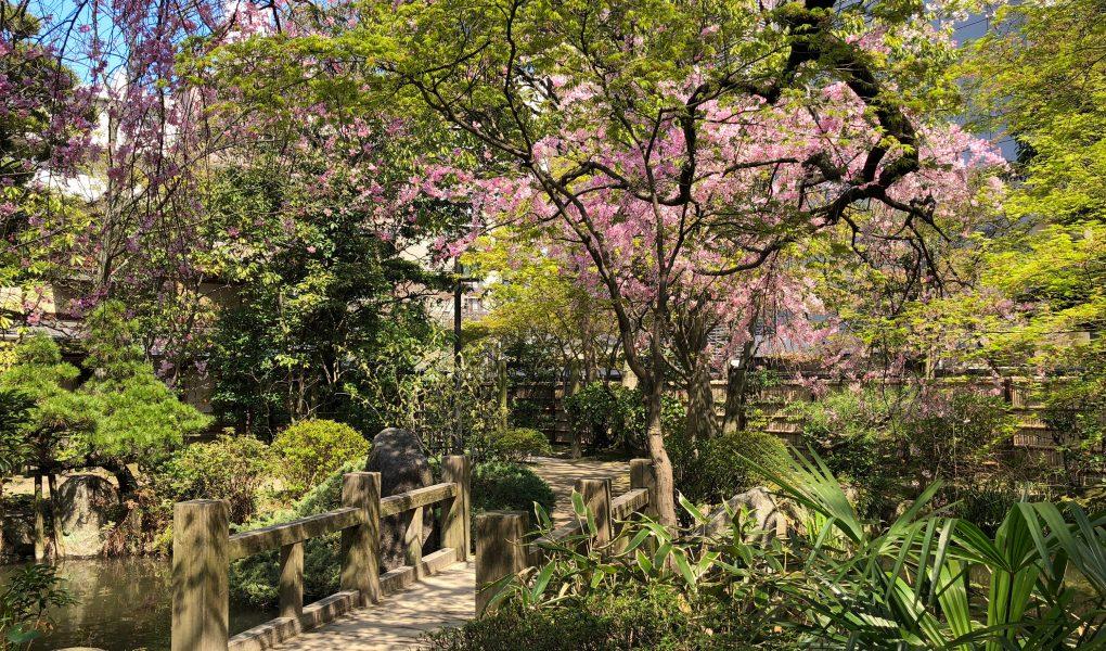 Rakusuien Garden, Fukuoka