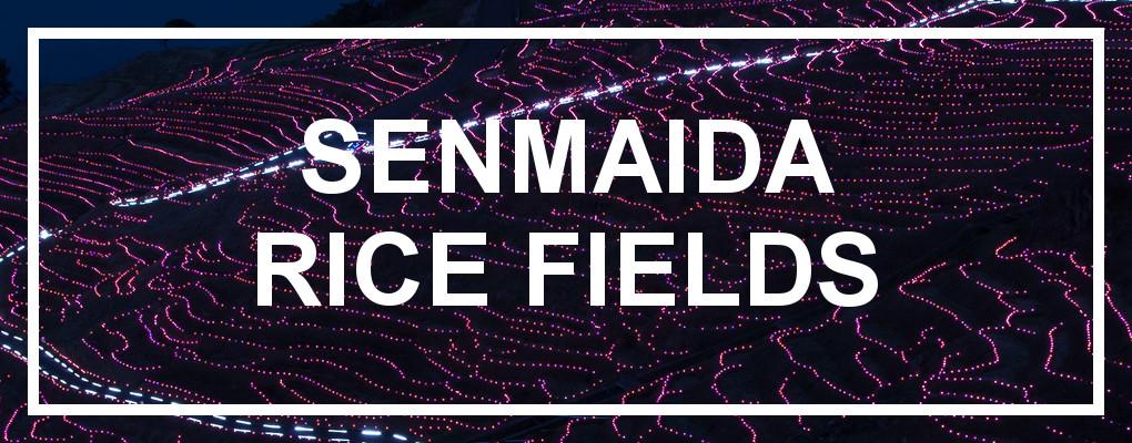 Senmaida 1000 Rice Fields, Noto Peninsula