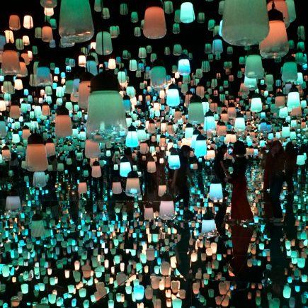 Teamlab Borderless Digital Art Exhibition
