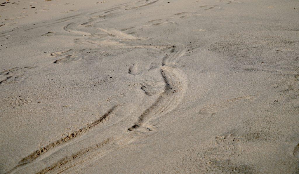Singing sand at Kotogahama Beach, Noto Peninsula