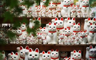 Maneki-neko beckoning cats at Gotoku-ji temple