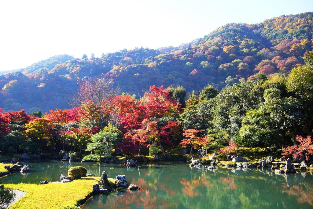 Sogenchi Garden. Credit: Tetsuhiro Terada. Licensed under CC.