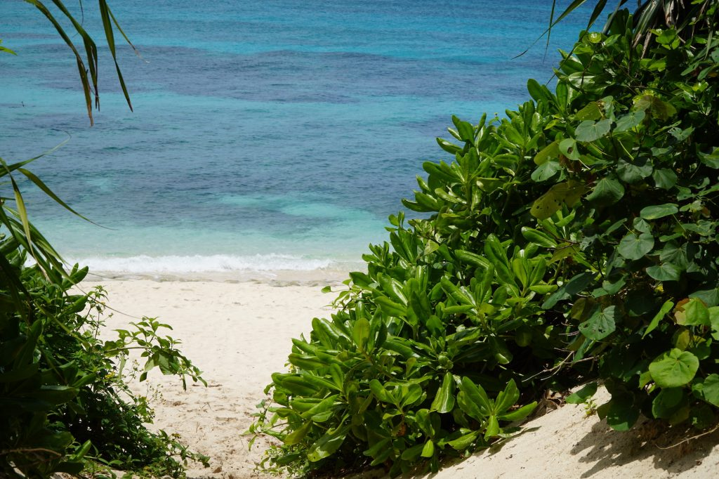 nagamahama beach