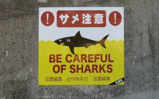 Shark warning on Okinawa beach. Photo © touristinjapan.com