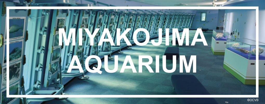 Miyakojima Aquarium. ©OCVB
