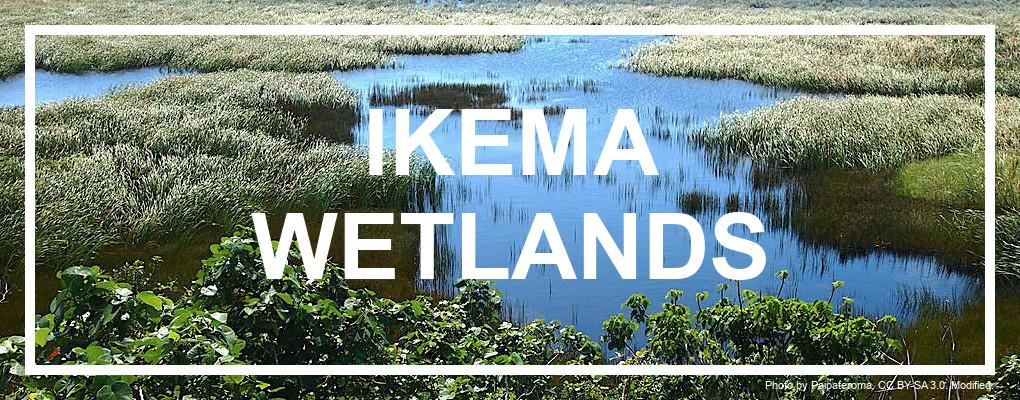 Ikema Wetlands. Credit: Paipateroma. CC BY-SA 3.0