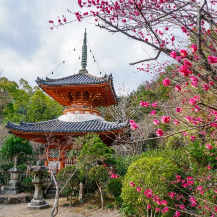 Mitakidera, Hiroshima. © touristinjapan.com