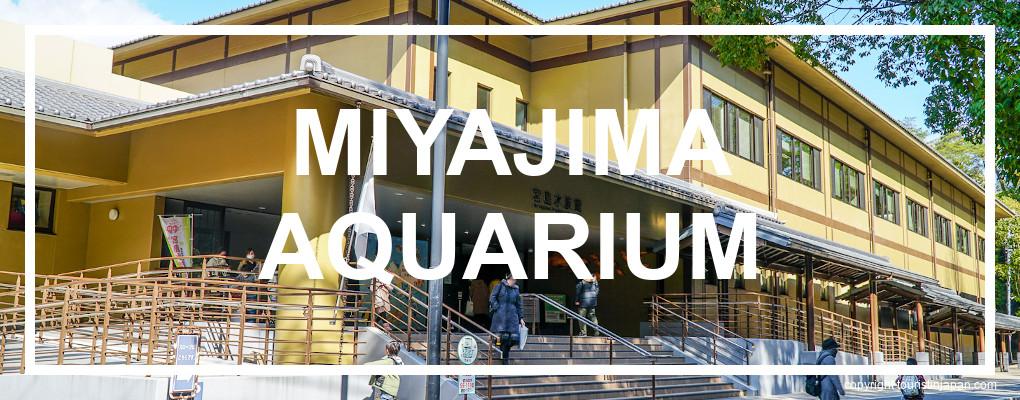 Miyajima Public Aquarium. © touristinjapan.com
